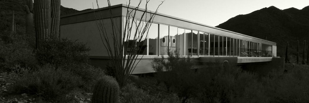 The Beauty of Organic Architecture in the Desert